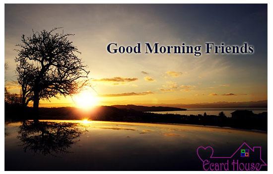 Good Morning Friends.
