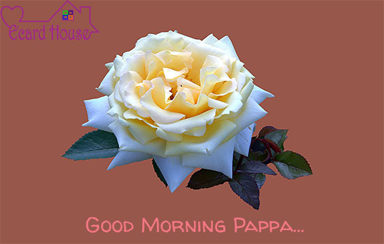 Good Morning Pappa