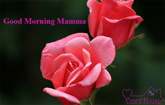 Good Morning Mamma