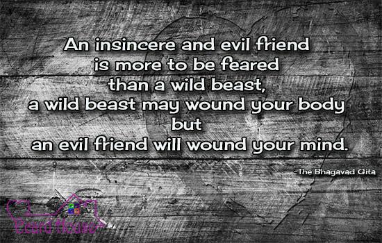 Insincere Friend