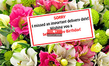 A Belated Birthday Ecard!